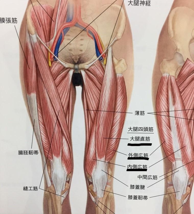 の 痛み マッサージ 膝